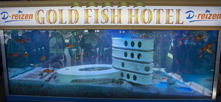 Hotel for fish picture