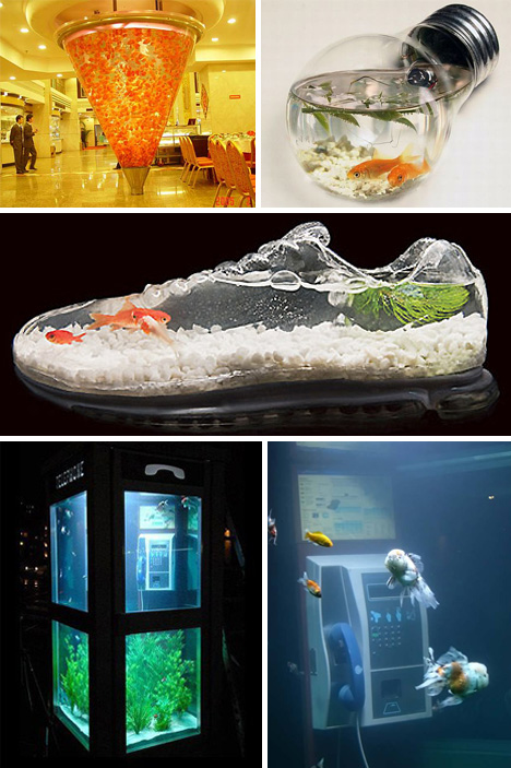Pics photos cool fish tanks http www potato com fish - Pictures of cool fish tanks ...