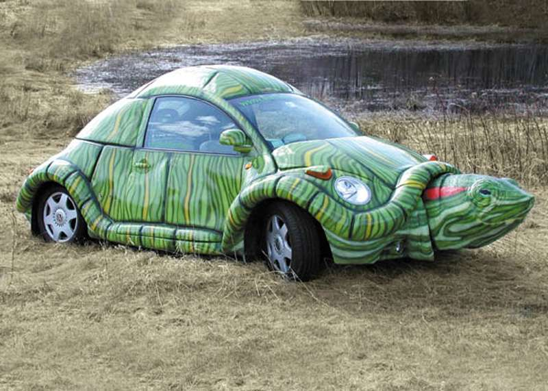 The turtle car
