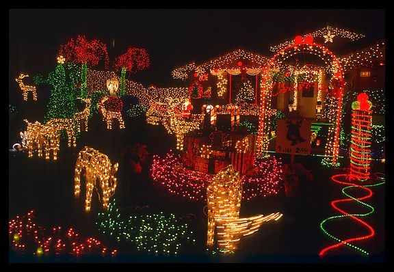 Christmas Lights Funny Pictures