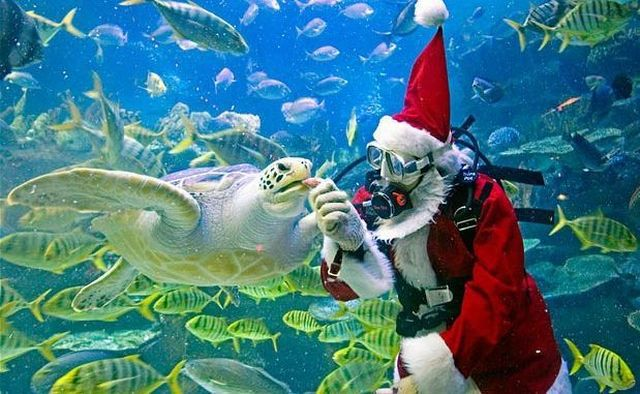 Santa Claus in the ocean