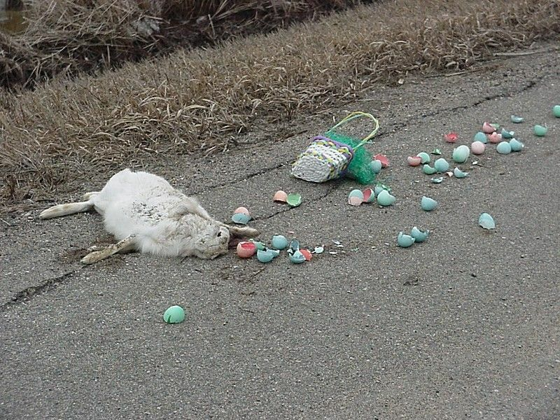 Euh... kids, there will be no Easter this year...
