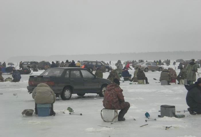 Fishing contest on ice- picture