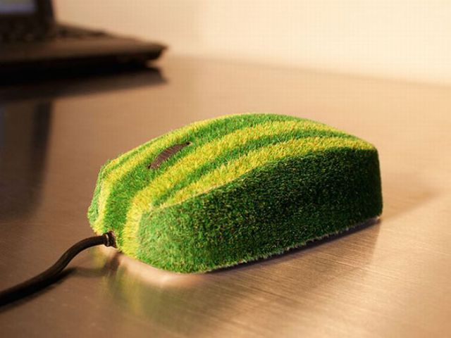 Cool and funny green objects - Objects inspired by nature ...