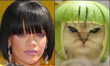 http://www.funny-potato.com/images/funniest-pictures/funny-twins/rihanna.jpg