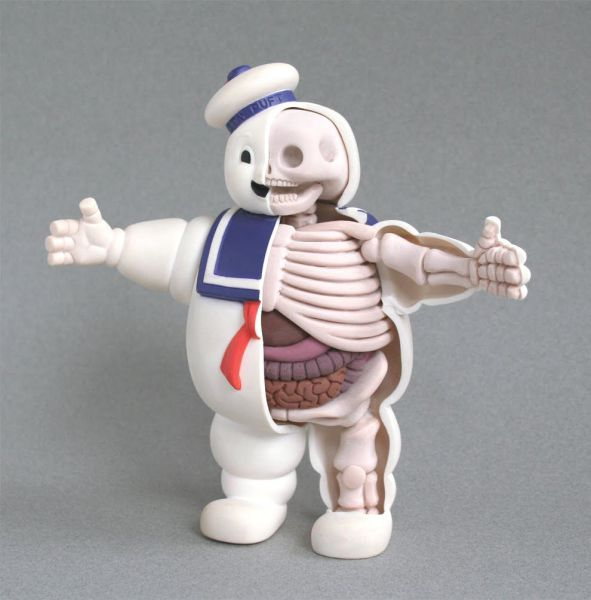 Skeleton Toy