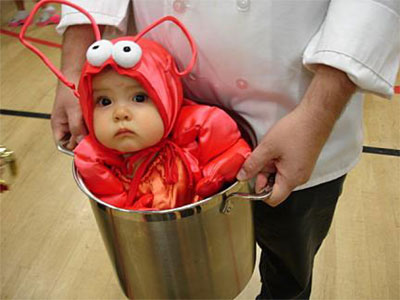 Halloween costumes for babies !