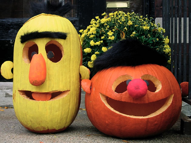 Funny Pumpkins Pictures