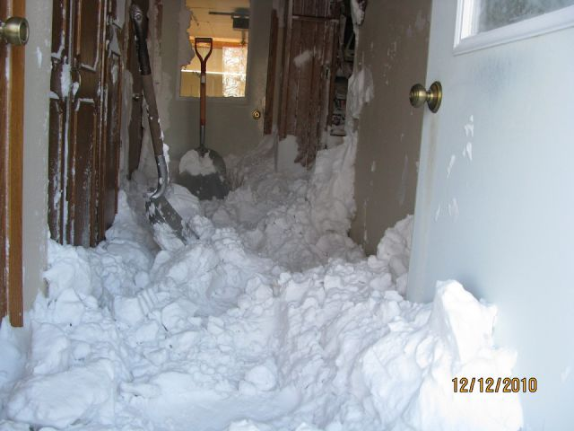 snow in your home funny pictures